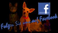 Kleintierpraxis in Burgdorf bei Facebook